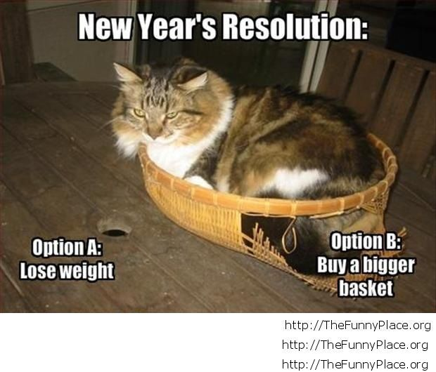 Funny New Year's resolution