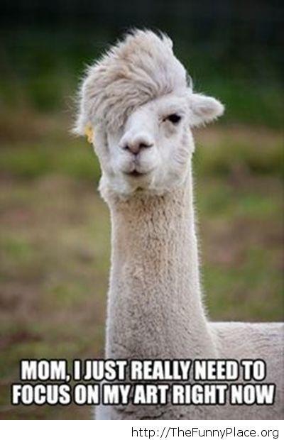 Funny llama artist