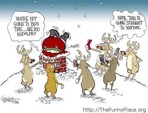 Funny reindeers blog image
