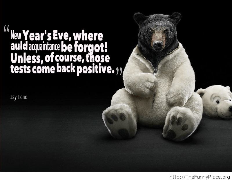 New Year moments bear quote