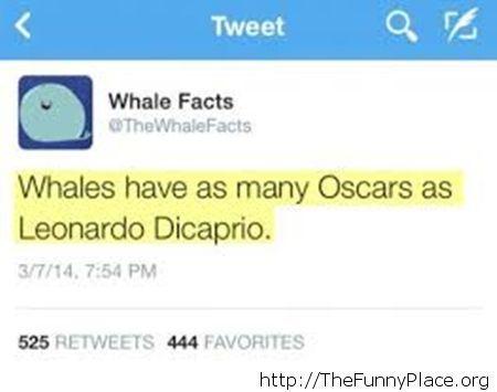 Poor Leonardo...
