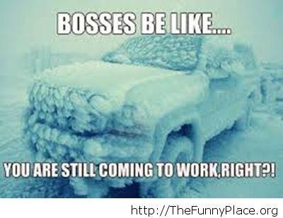 Scumbag bosses in the winter