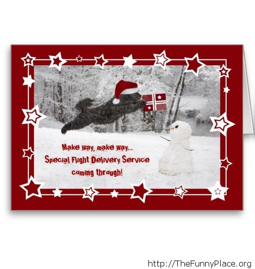 Special delivery for Christmas image