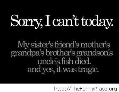 The best excuse ever