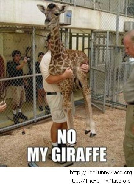 This is my giraffe