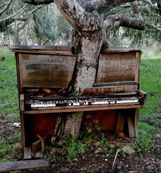 Awesome abandoned piano image