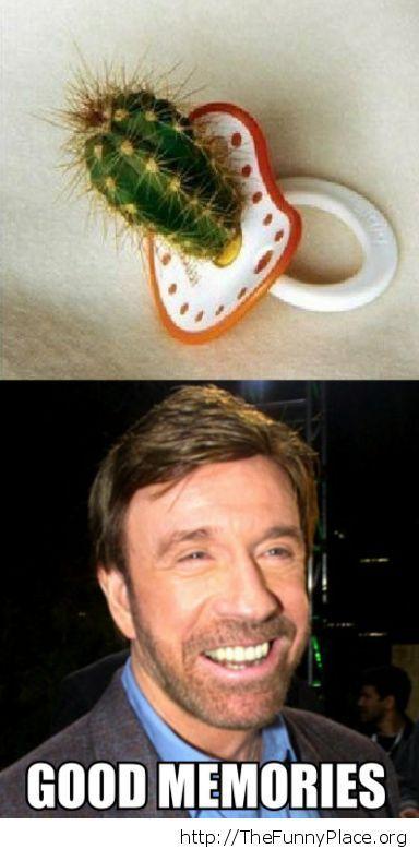 Chuck Norris - Good memories