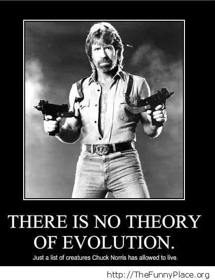 Chuck Norris - No evolution