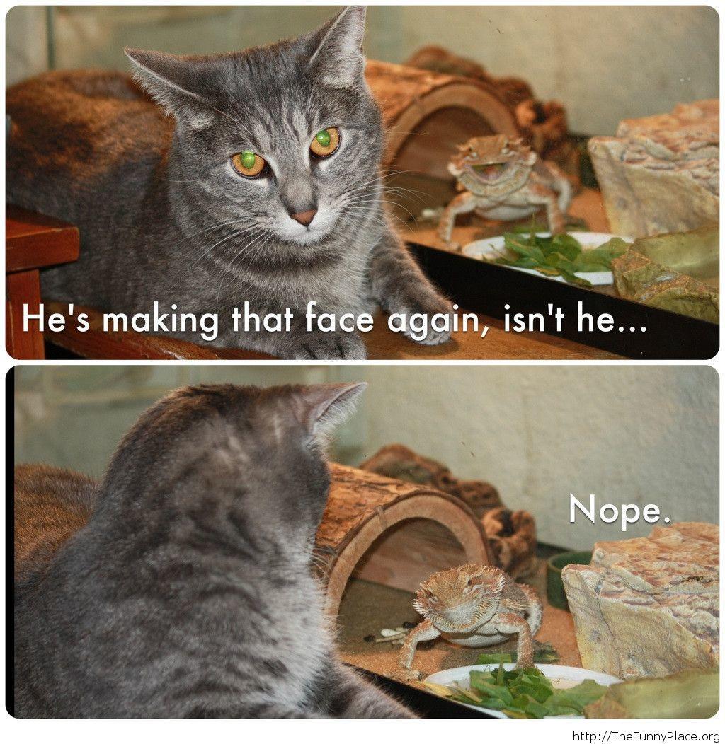 Funny troll lizard image