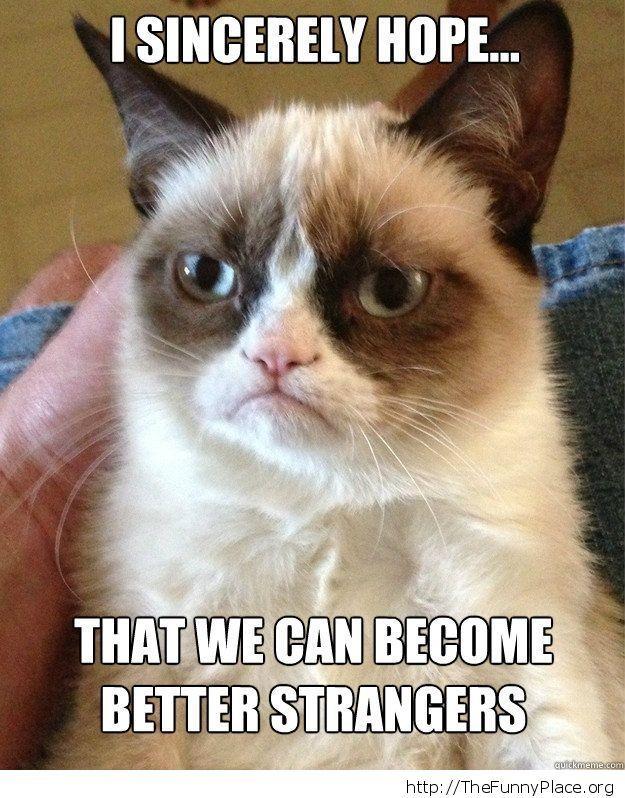 Grumpy Cat - Better strangers