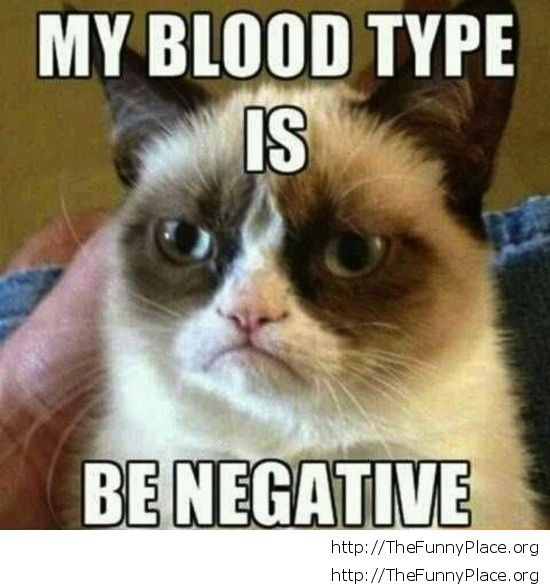 Grumpy Cat - Blood type