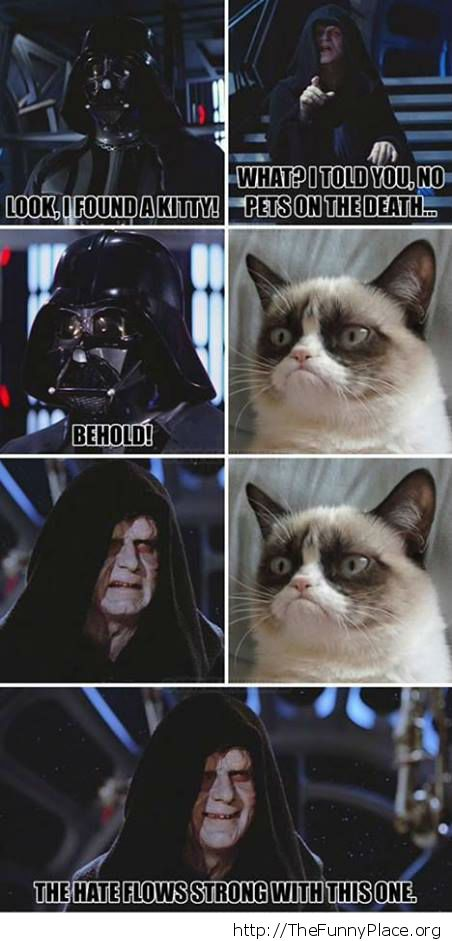 Grumpy Cat - Darkside Cat