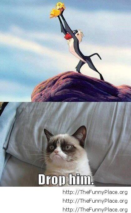 Grumpy Cat - Drop him