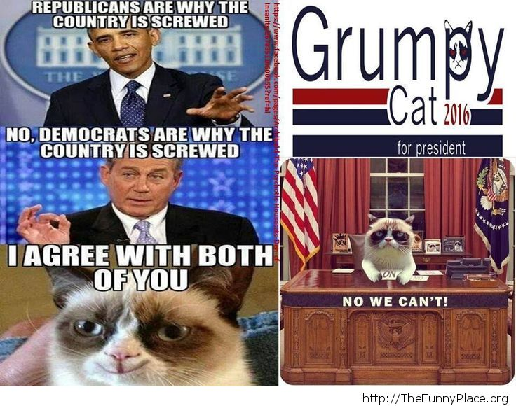 Grumpy Cat - For President