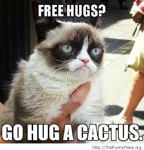 Grumpy Cat - Free Hugs