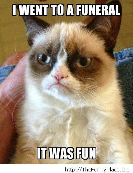 Grumpy Cat - Funny funeral