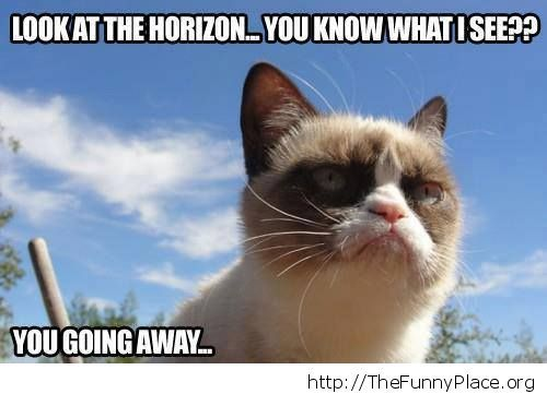 Grumpy Cat - I see you in the horizon