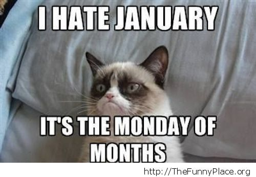 Grumpy Cat - January