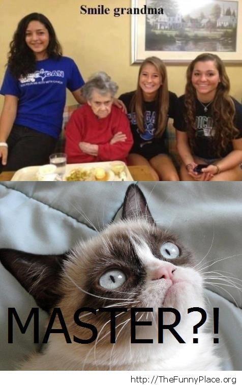 Grumpy Cat - Master