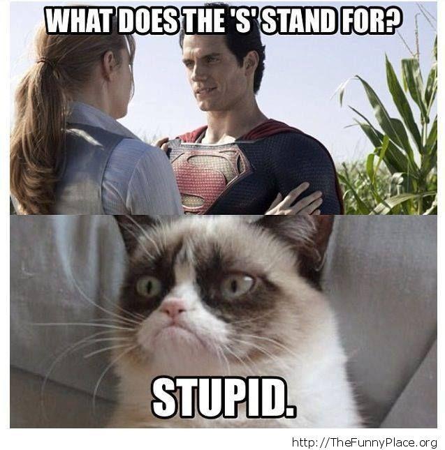 Grumpy Cat - Stupid Superman