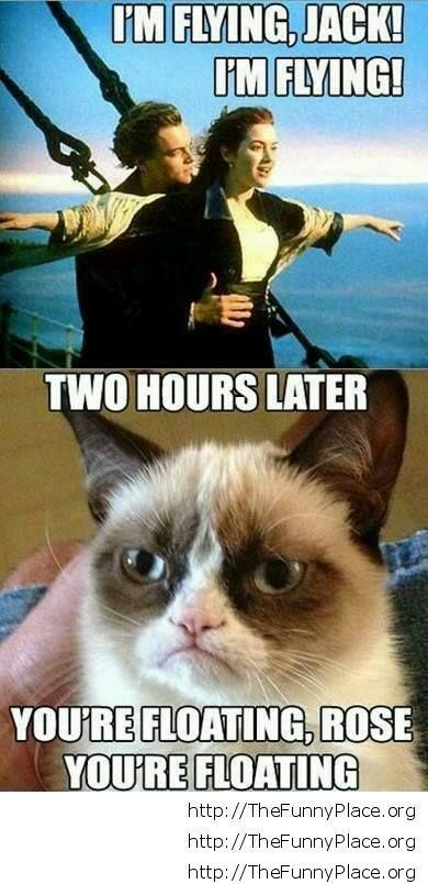 Grumpy Cat - Titanic