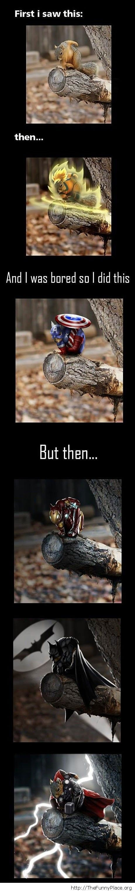 Hero squirrel