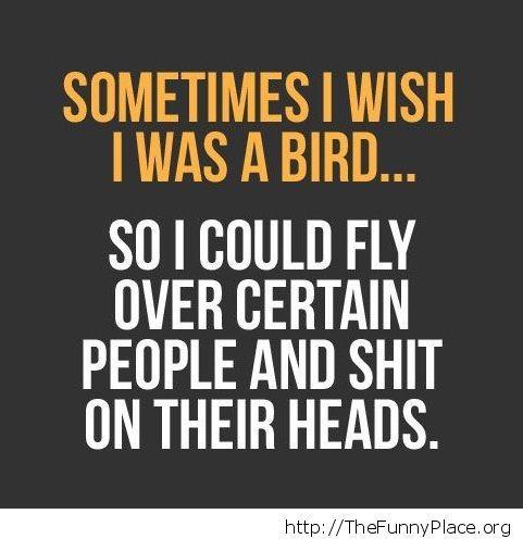 I wish I was a bird...