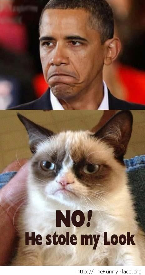 Obama Grumpy Cat