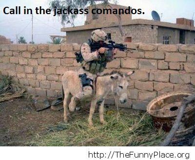 One of the Jackass Comando