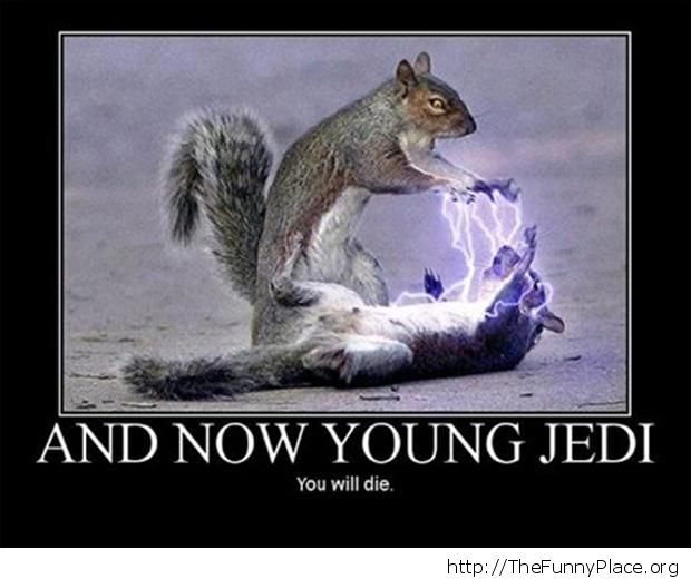 Squirrels from Star Wars