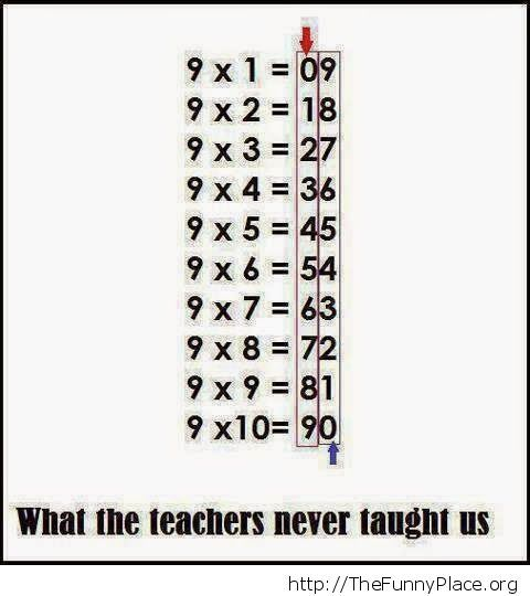 What the teachers never taught us