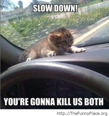 You know you're a bad driver...