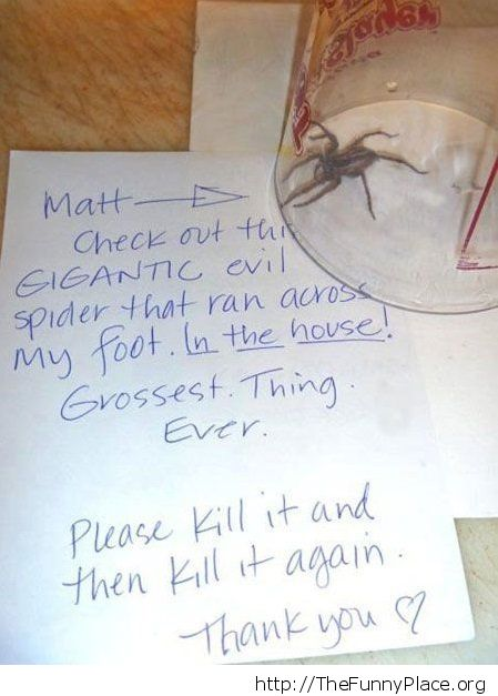 A message for Matt