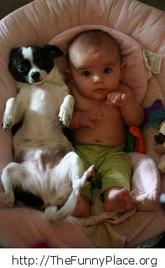 Cute baby with dog