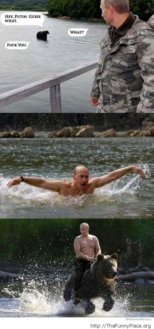 Funny Putin with bear
