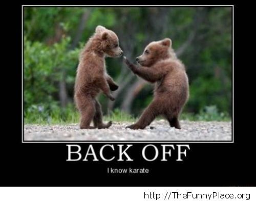 Funny karate bear cub