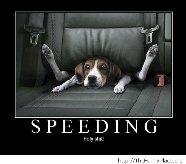 Funny speeding car situation