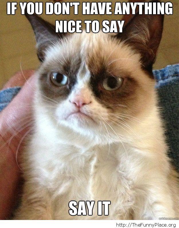 Grumpy Cat - Say it