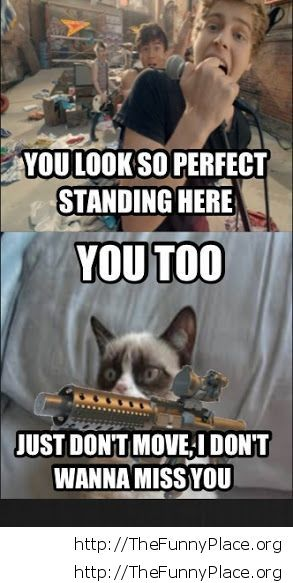 Grumpy Cat - Stay there
