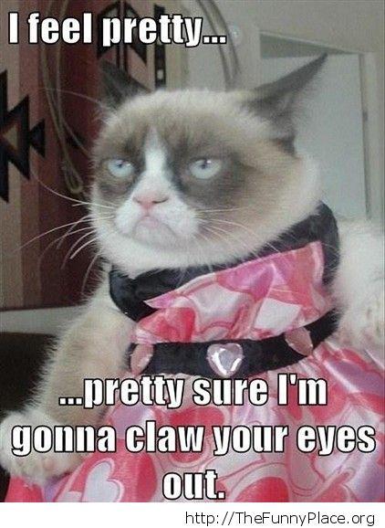 Grumpy cat - I feel pretty