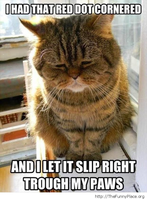The cat failure