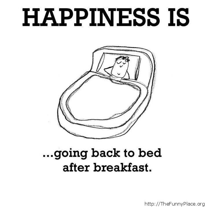 What happiness is