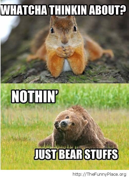 Cute bear and squirrel