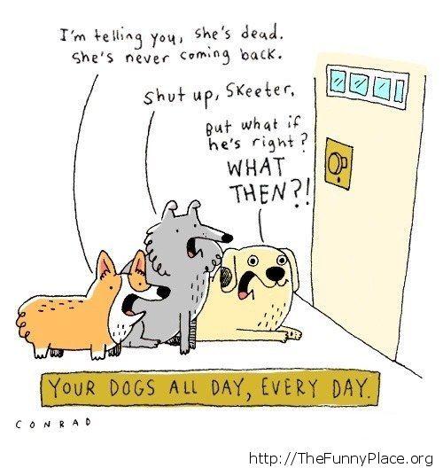 Dogs conversation