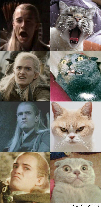 Funny copycat Legolas