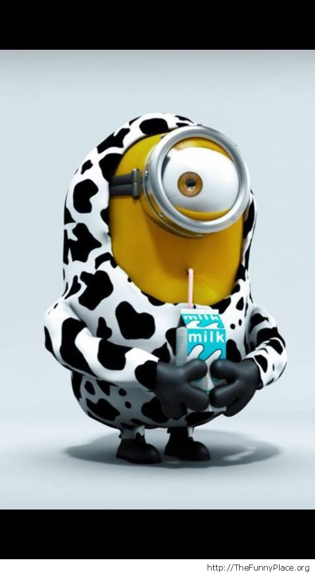 Funny cow minion