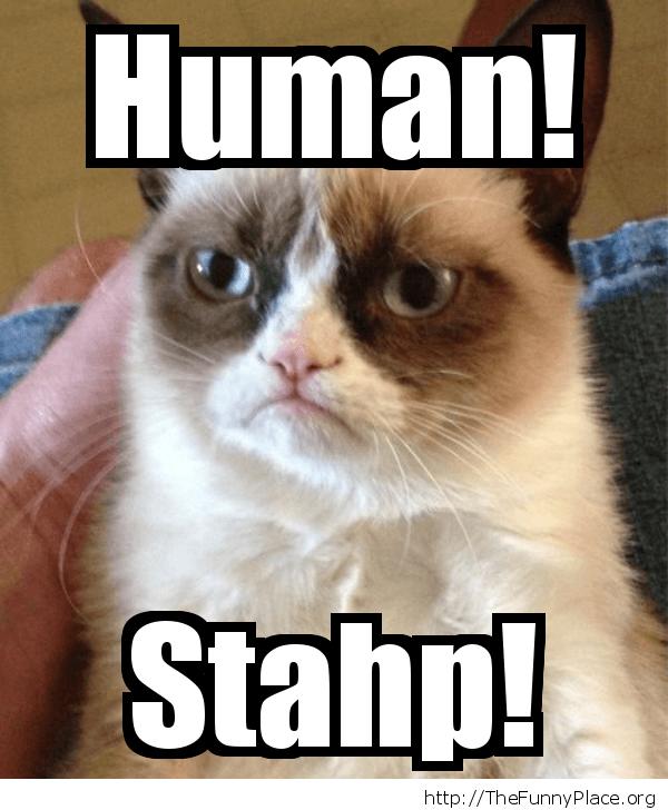 Grumpy Cat - Stahp