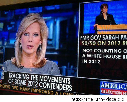 Sarah Palin or Tina Fey