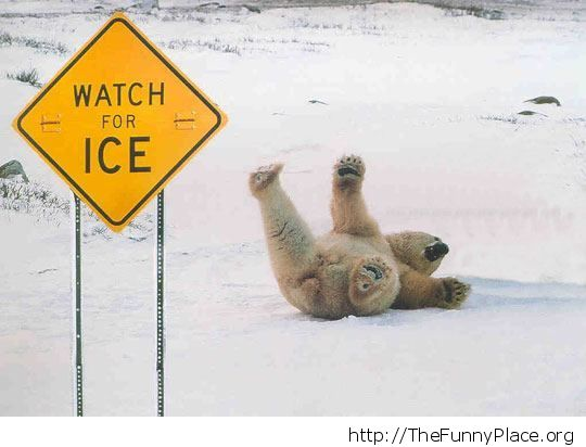 Watch for the ice