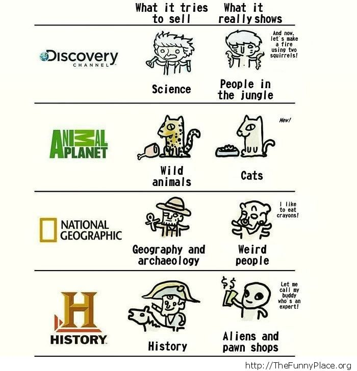 What TV channels really show